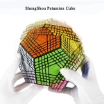 ShengShou Petaminx Cube Black color