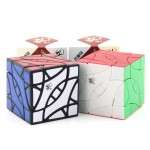 DaYan BiYiNiao Magic Cube